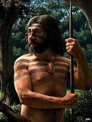 DNA reveals Neanderthal extinction clues