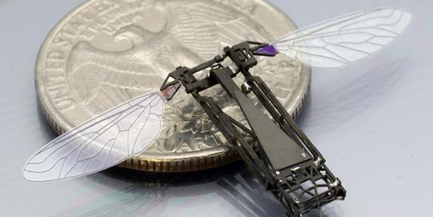 Harvard Scientists Unleash The Robot Bees