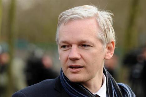 Julian Assange To Run For Senate