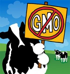 gmo-statement-blog