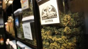 medical-marijuana.si