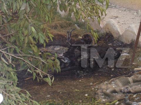 iraq-soldier-bodies-on-fire-marine-investigation-photos-04-480w