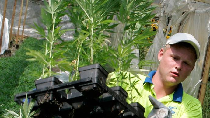 Feds make first step towards hemp legalization