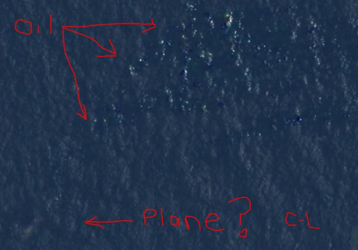 Courtney Love Thinks She Found Missing Flight 370