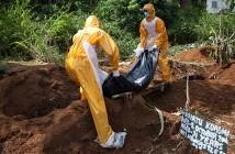 ebola.si