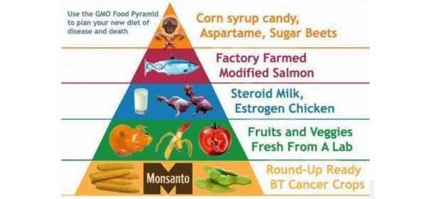 The Corporation Manipulation Model of Food