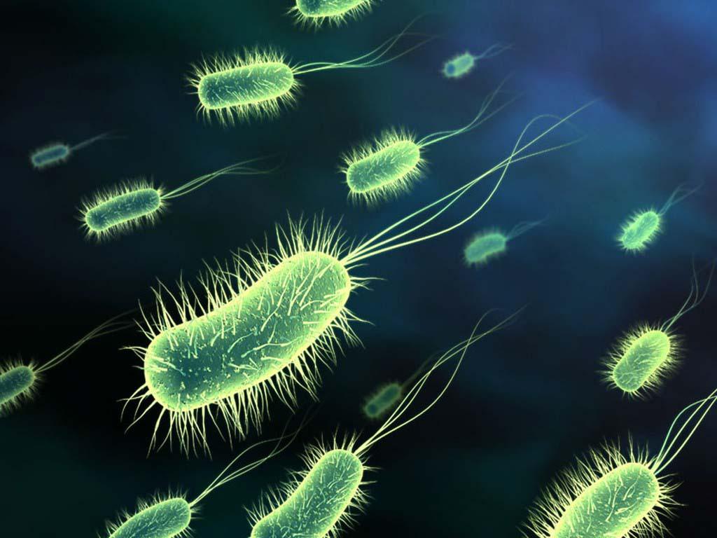 Millions were in germ war tests