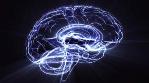 brainevotop2