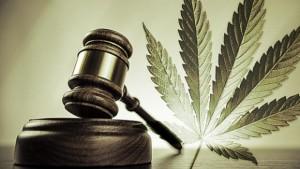 marijuana_laws