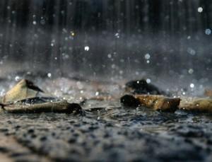 rainapril2013_320x245