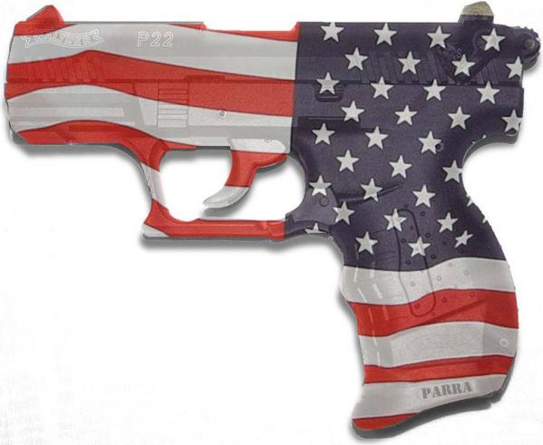 Gun Owner Loses 2nd Amendment Case